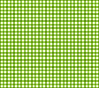 Aperçu de Lemonade Summer Checks Lime