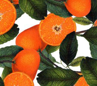 Aperçu de The Forbidden Orange Fabric