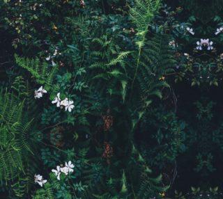 Fleurs Vertes preview
