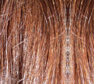 Aperçu de Macro Hair
