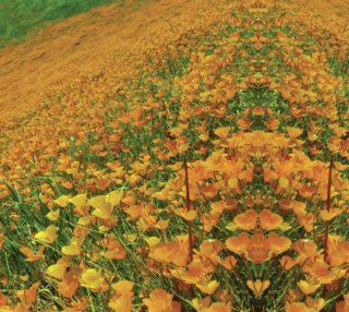 Aperçu de Poppy Paradise