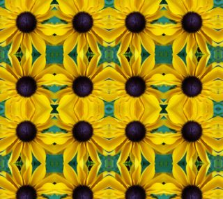 Looking Down the Black Eyed Susan preview