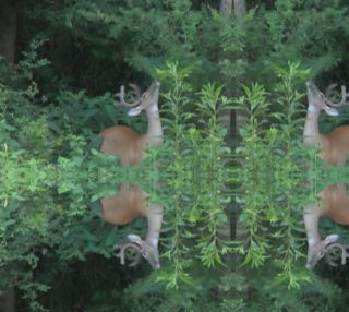 Deer Dreams: Browsing Blissfully 3642 basic mirror 24.94 X 18.72 preview