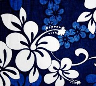 blue hibiscus preview