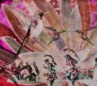 Hummingbird dance IV preview