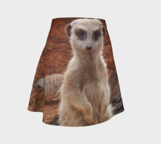 Meerkat preview