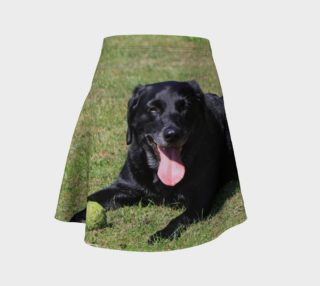labrador retriever black laying with toy preview