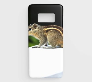 squirrel preview