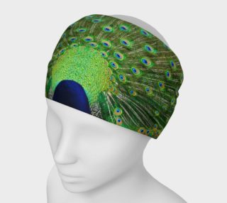 Peacock Wheel Headband preview