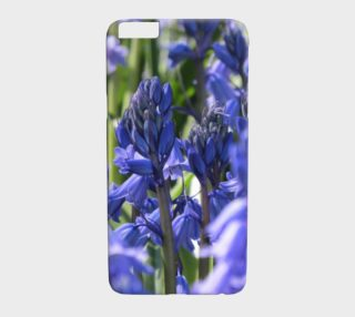 Bluebells preview