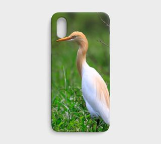Cattle Egret on iPhone X preview