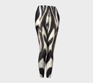 Aperçu de Zebra