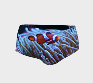 Clownfish Booty preview