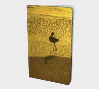 Aperçu de L'oiseau ballerine / Ballerina Bird