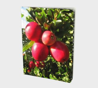 Red apples.. notebook. preview