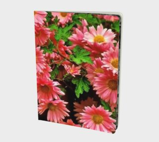 Lovely daisies..  aperçu