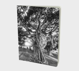 Banyan trees lge notebook preview