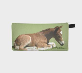 Aperçu de Welsh Pony foal