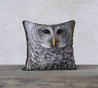 Barred Owl Cushion preview