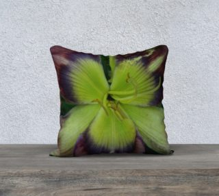 throw pillow preview