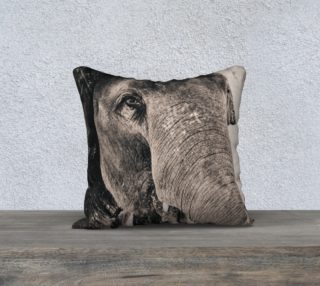 Aperçu de Elephant