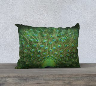Peacock Wheel 20'' x 14'' Pillow preview
