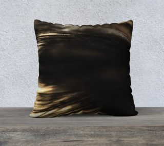 22 x 22 Black Feather Pillow preview