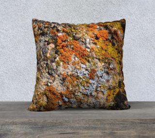 Calico Lichens preview