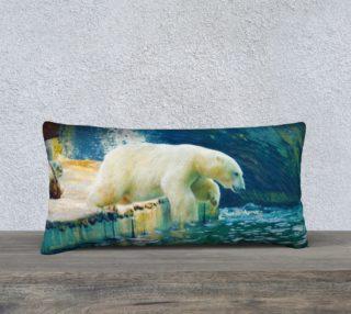 Polar aperçu