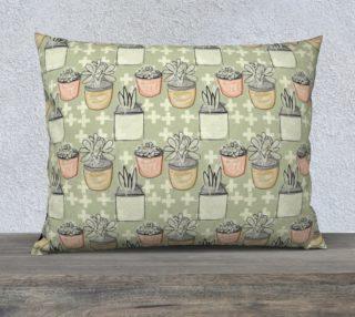 Aperçu de Succulent Pots-Sage