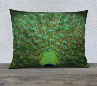 Peacock Wheel 26'' x 20'' Pillow preview