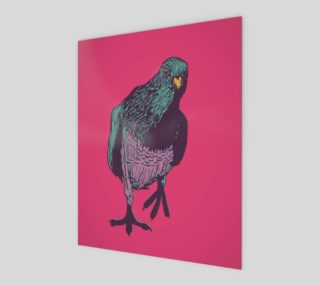 poster 8x10 - Curious Pigeon in Bright preview