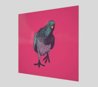 1:1 Art Print - Curious Pigeon in Bright preview