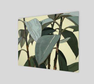 Aperçu de basic plant