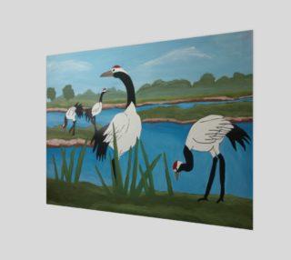 Cranes preview