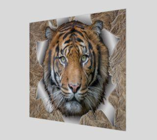 Aperçu de Bengal Tiger