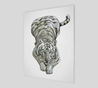 Zabu White Tiger preview