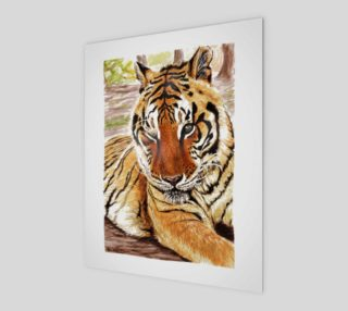 Zeus Tiger at Rest preview