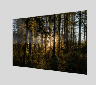 Sunrise in the Forest preview