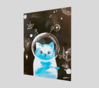 Aperçu de Space cat