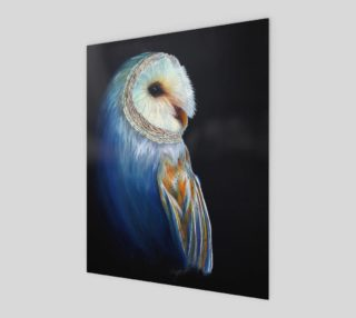 Barn Owl in Color 8x10 Art Print preview