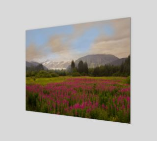 Alaskan Fireweed preview