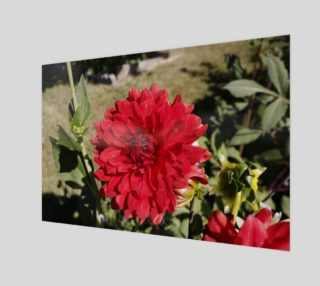 Red Dahlia Wall Art preview