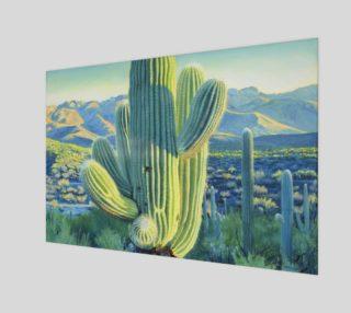 Saguaro 1 preview