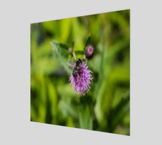 Aperçu de A Bee on a Purple Flower Canvas