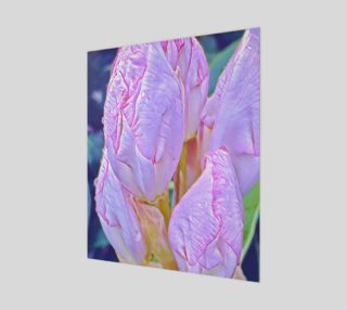 Lavender Magnolia preview