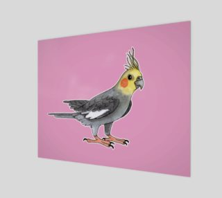 Cockatiel bird preview