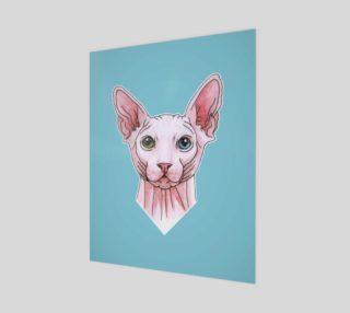 Sphynx cat portrait preview
