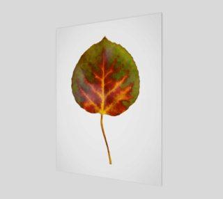 Aspen Leaf preview