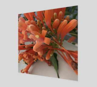 YMCA Orange Flower/Flor preview